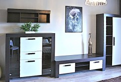 zdjęcie przedstawia salon ze sprzętem rtv w apartamencie do wynajmu w Szczecinie
