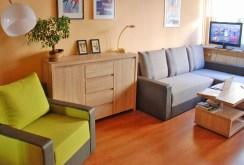 zdjęcie prezentuje salon w apartamencie w Krakowie na sprzedaż