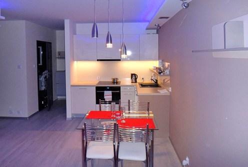 na zdjęciu nowoczesna kuchnia w luksusowym apartamencie do wynajęcia w Szczecinie