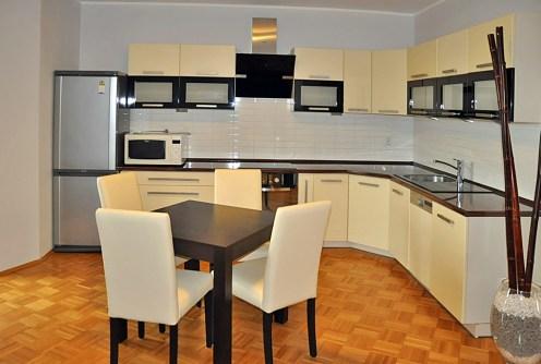 na zdjęciu nowoczesny aneks kuchenny w apartamencie do wynajęcia w Toruniu