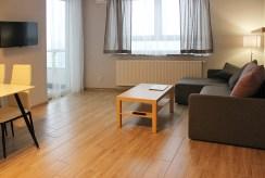 widok na salon w luksusowym apartamencie do wynajmu w Katowicach