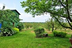 widok na zadbaną i zagospodarowaną działkę wokół luksusowej willi w okolicach Torunia na sprzedaż