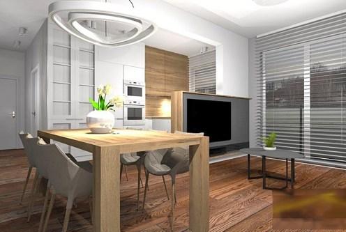 nowoczesny salon w ekskluzywnym apartamencie do wynajęcia Piotrków Trybunalski