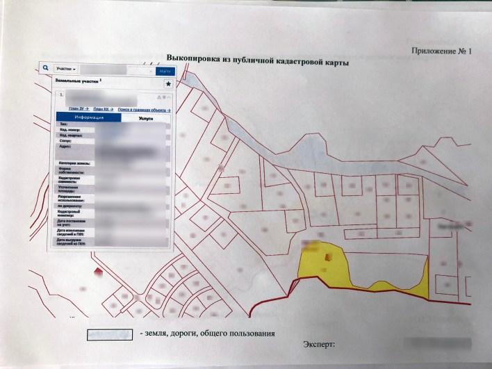 Приложение №1. Выкопировка из публичной кадастровой карты