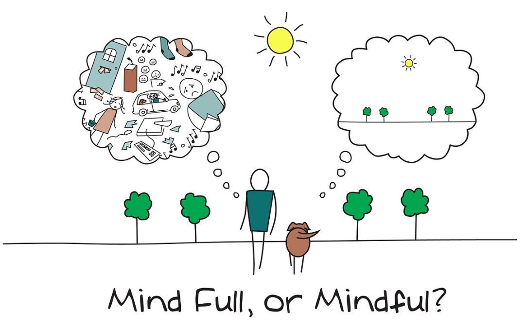 Mindfulness in daily routine