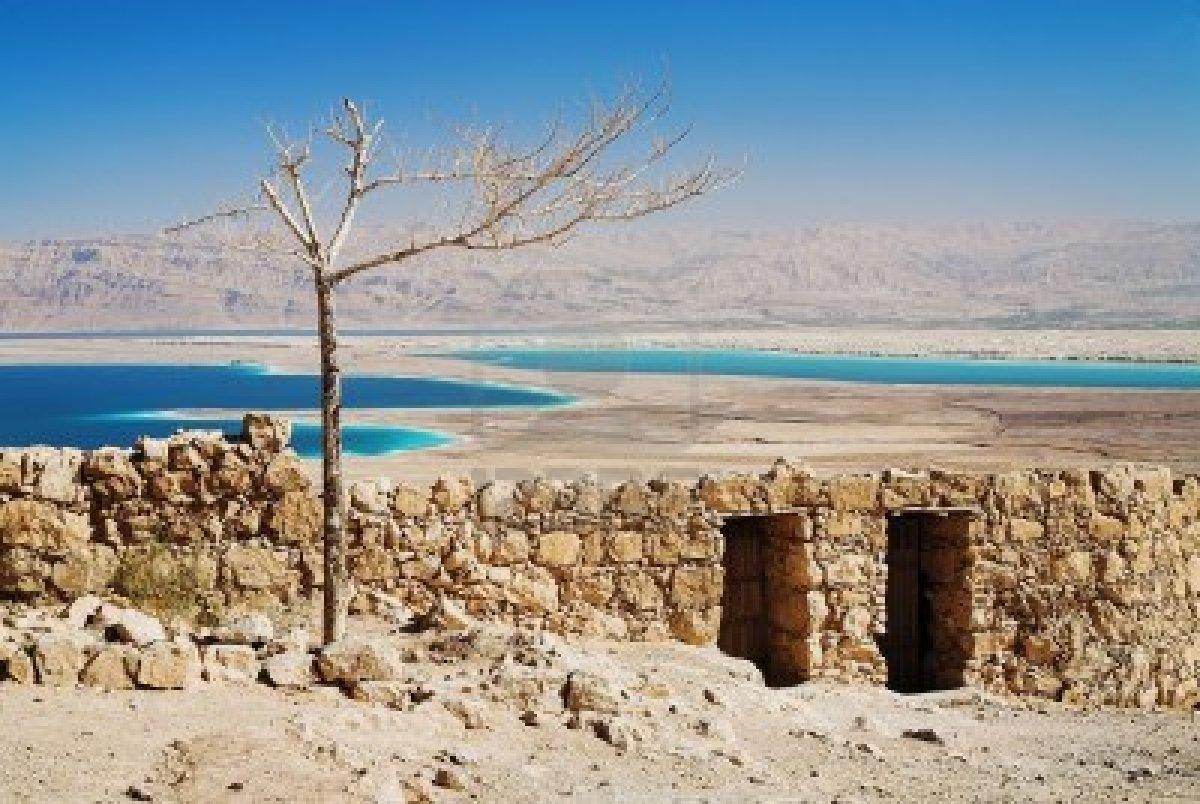Lengua de tierra – Antología del cuento israelí