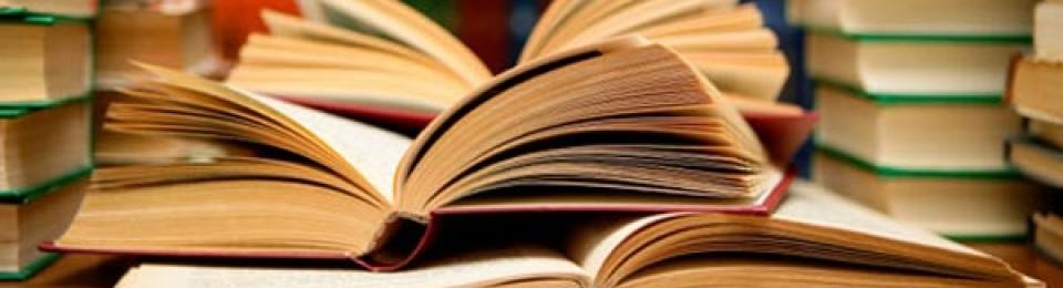 Breves apuntes sobre crítica literaria