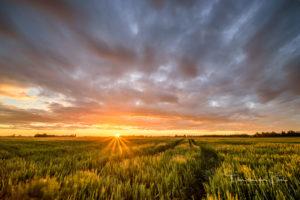 Gouden uur zonsondergang