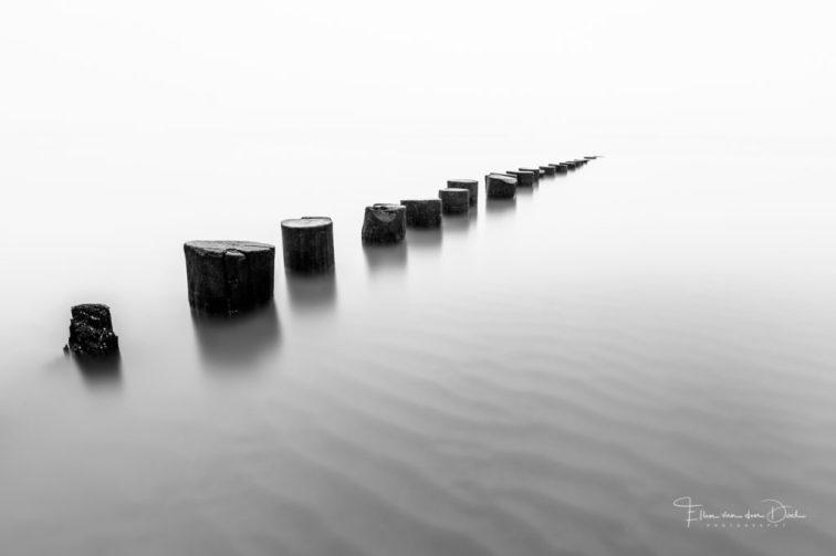 Zwart wit foto van palen in een kalme zee