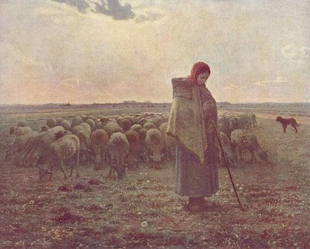 Rebaño de ovejas con su pastor