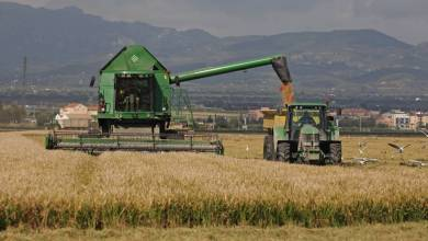 Photo of Suba del precio de productos agroindustriales