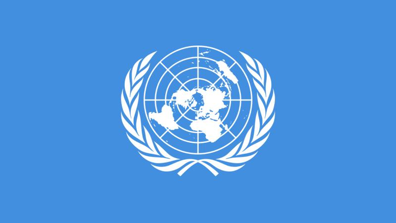 Entre los dichos de la ONU y los análisis microeconómicos