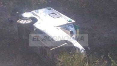Photo of Funcionario dio una explicación religiosa a los accidentes por animales sueltos
