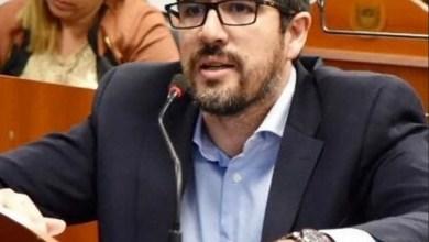 """Photo of Un diputado propone ponerle """"Cata"""" Díaz a un Polideportivo"""