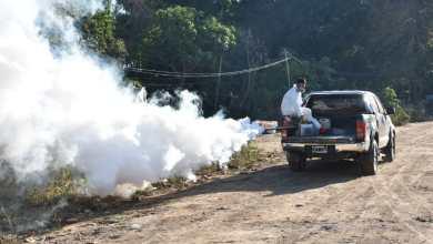 Photo of Números alarmantes: el rápido avance del dengue