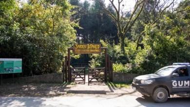 Photo of El Jardín Botánico de Yerba Buena se prepara para la reapertura a sus visitas
