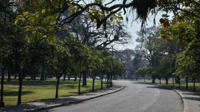Photo of Demandará tres meses la renovación del sistema de iluminación del parque 9 de Julio