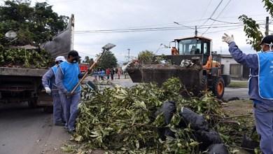 Photo of Operativos contra el dengue en Villa Amalia