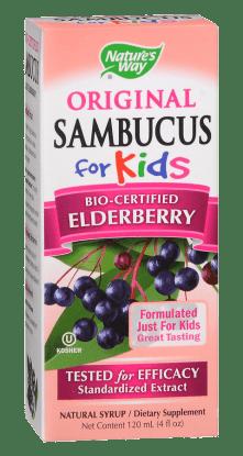 sambucus-2