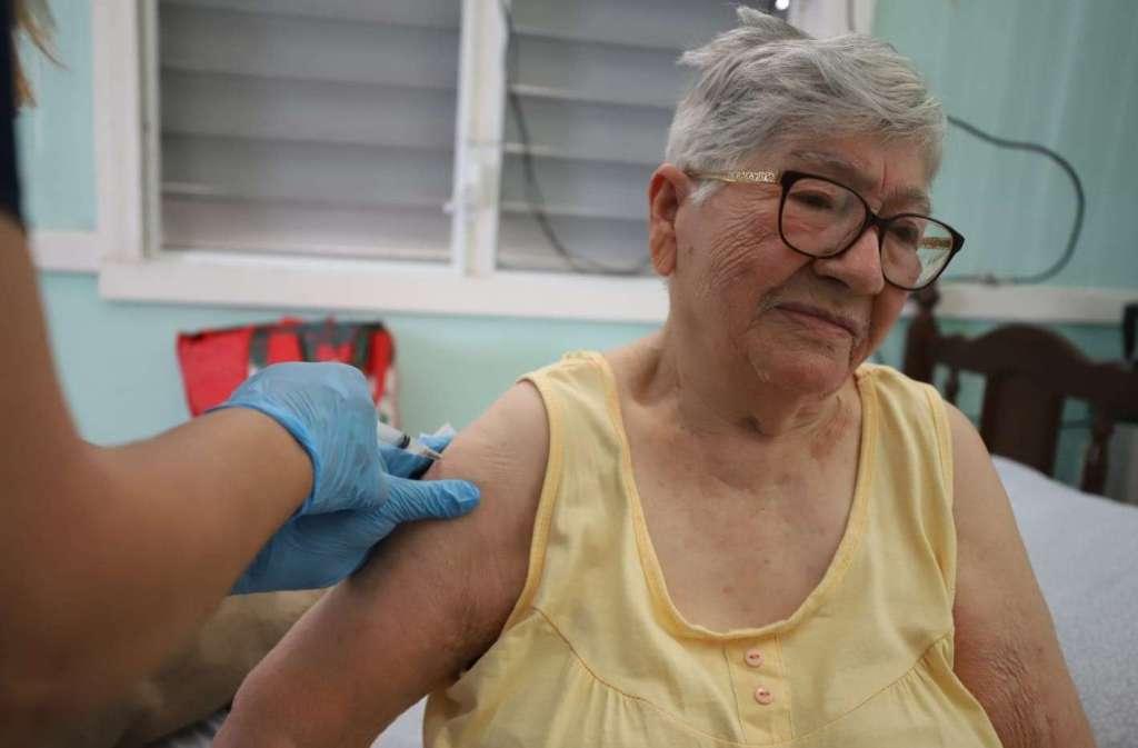 proceso de vacunación
