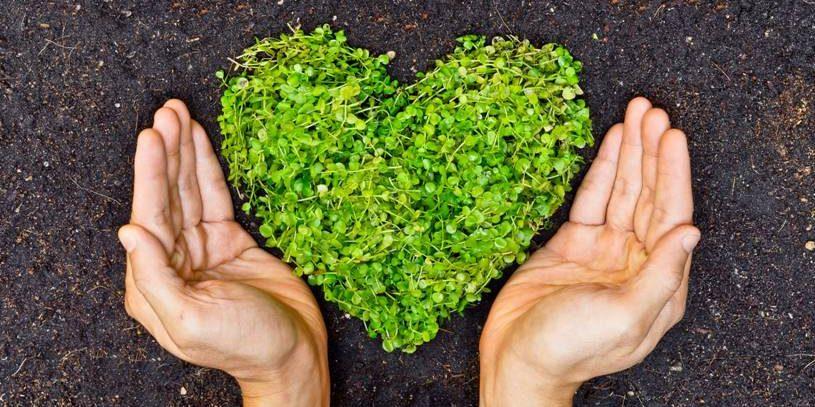 Corazón Compromiso 2030 naturalmente