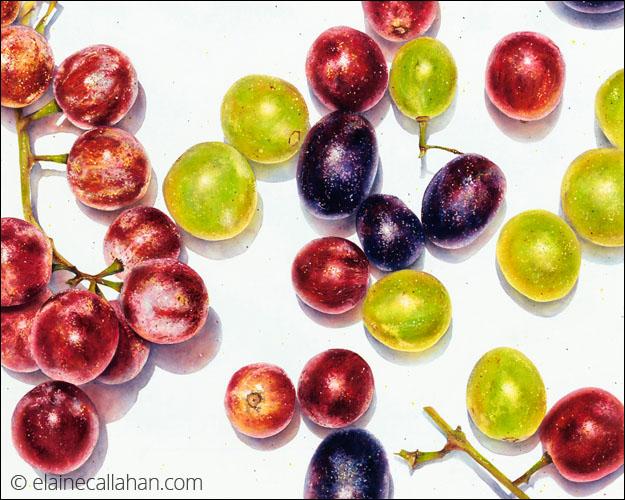 Grapeful