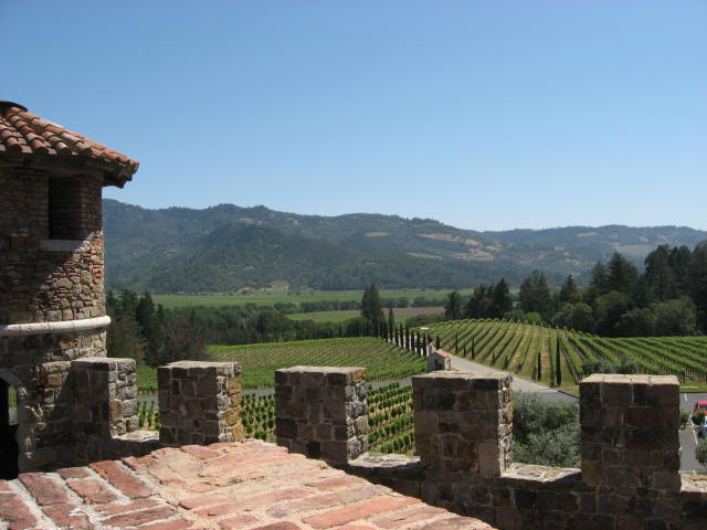 Lush Vineyards and the CIA in the Napa Valley (6/6)