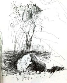 Sketch from Katherine Gorge in Nitmiluk National Park