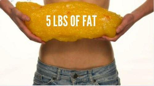 Fifty Fat Facts