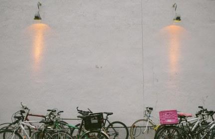 A true cycling city