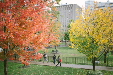 Students on McGill's campus