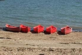 canoes lined up photo © iusedtobeindecisive