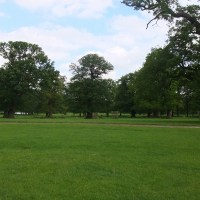 a walk in Woburn Abbey Gardens and a drive through the Deer Park