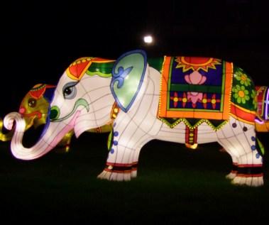 elephants with vases 3