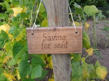 Saving for seed