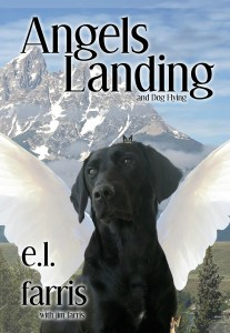 angels_landing_cover_ebook