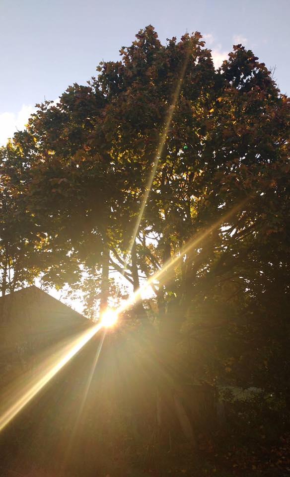 sunny-skies-elainesrovesntroves