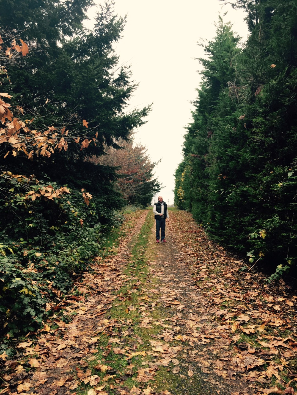 druids-glen-walk-elainesrovesntroves