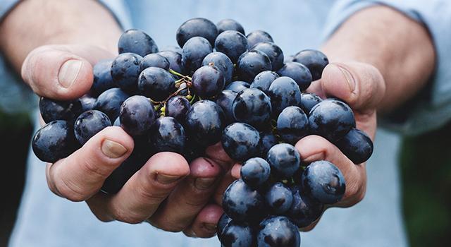 5 Alimente bune pentru sănătatea ta în fiecare zi 9