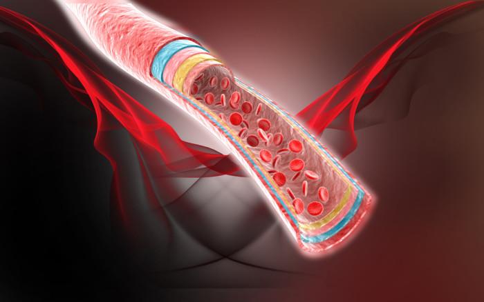 blood-flow-e1451610818137.jpg