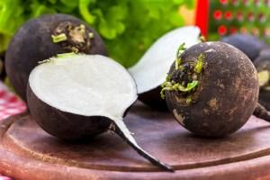 Ridichea neagră, beneficii: reglarea hormonilor tiroidieni, detoxifiere