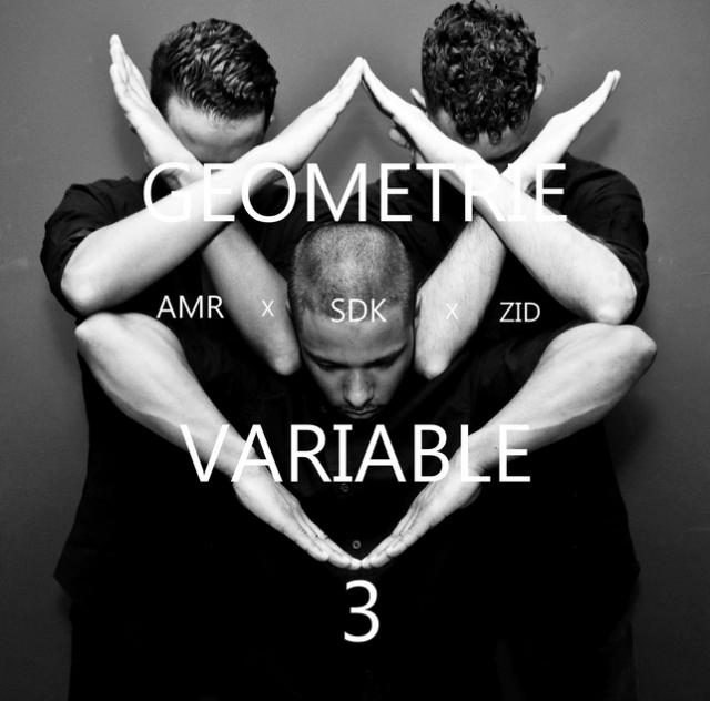 Românii au talent 2021: Géométrie Variable, un dans aproape perfect 3