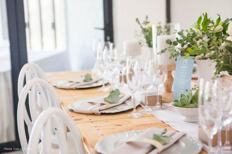 nelmari-emil-bergland-wedding_elana-van-zyl-photography-3447