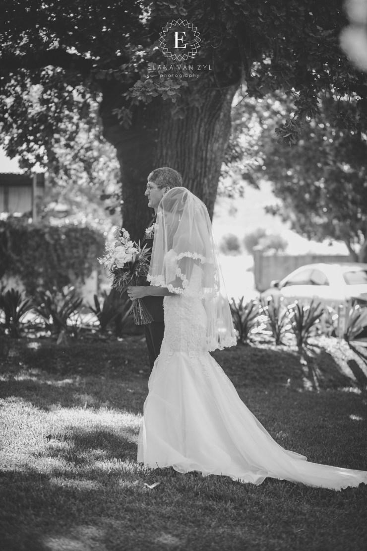 Groenrivier Wedding Venue-8565