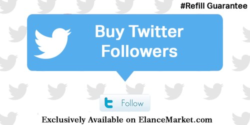Buy Twitter Followers with Refill Guarantee