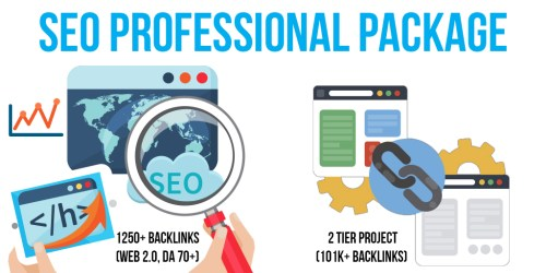 SEO Professional Package: 2 Premium & SEnuke Campaigns, 1250+ Backlinks (Web 2.0, DA 70+, Do-Follow), 2 Tier Project (101K+ Backlinks)