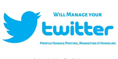 Will Manage your Twitter Profile Handle Posting, Marketing & Handling