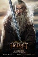 Poster francés de Gandalf