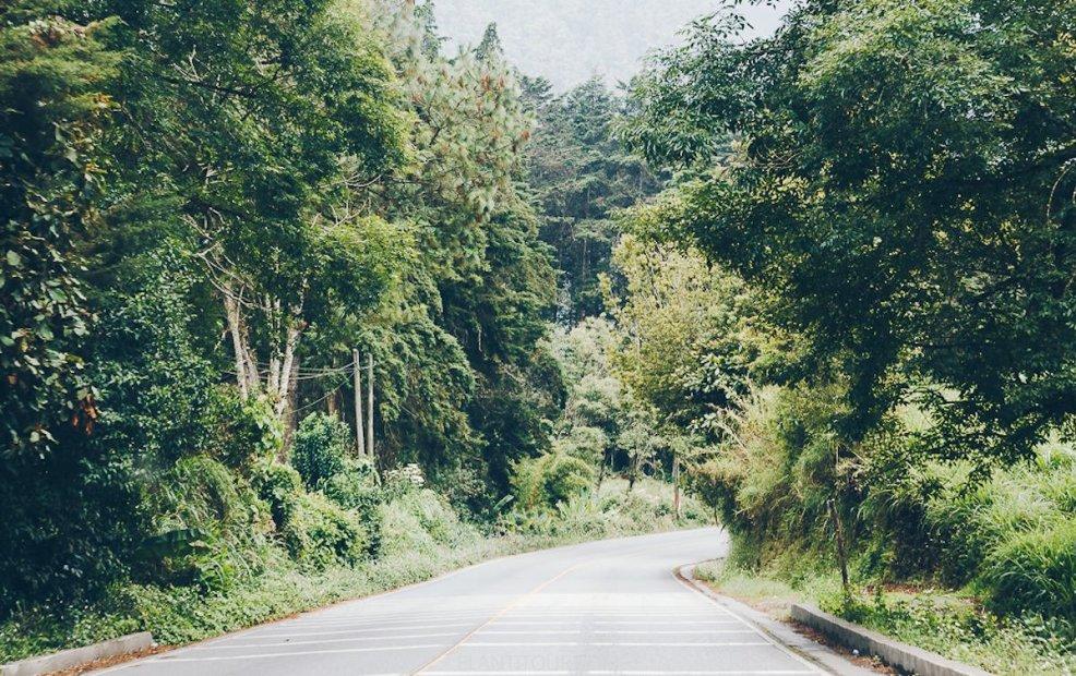 Las mejores rutas de la Panamericana