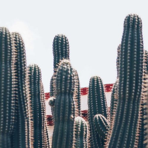 es seguro viajar a mexico